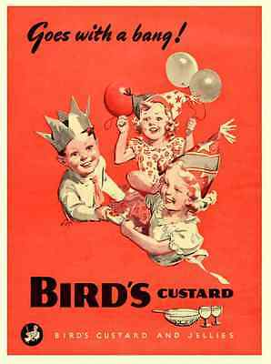 Metal Sign Birds Custard Childrens Party Vintage 1950S A3 16x12 Aluminium