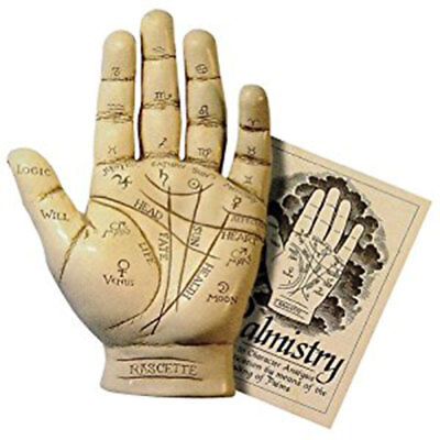 NEW Palmistry Hand Model Resin Sculpture w/ Booklet Fortune Telling Palm Reading