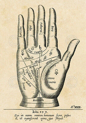 Palmistry: Palm Diagram by Vintage Reproduction Tarot Reading Print Poster 19x13