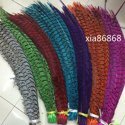 "Halloween//Craft//Hats//Pads 25 Pcs LADY AMHERST PHEASANT Feathers 4-12/"" RED TIP"