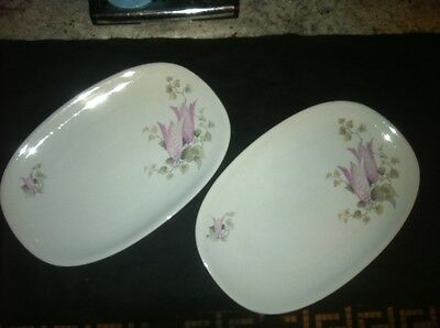 VTG MATCHING PAIR HUTSCHENREUTHER ARZBERG SERVING PLATE DISH GERMANY GERMAN