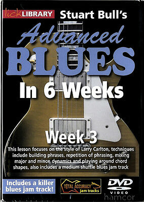 Stuart Bull's Advanced Blues Guitar Lick Library DVD 3