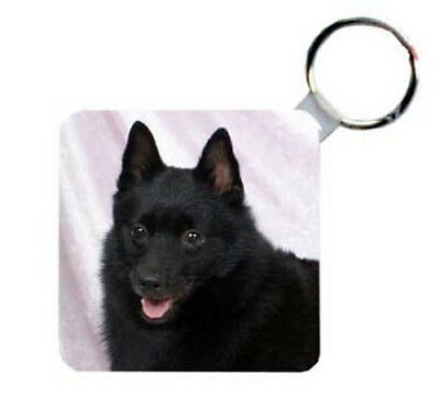 Schipperke     Personalized  Breed  Key  Chain