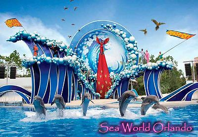 SEA WORLD ORLANDO USA TRAVEL SOUVENIR FRIDGE MAGNET #fm261