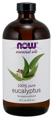 NOW FOODS Eucalyptus Incense Essential Oil 16 OZ BIG BOTTLE for difuser & burner