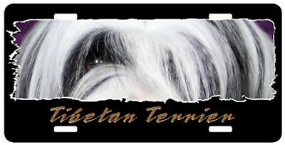 "Tibetan  Terrier  "" The Eyes Have It "" License  Plate"