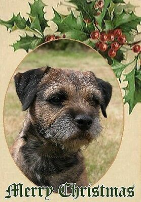Border Terrier Dog A6 Christmas Card Design XBORDTER-7 by paws2print