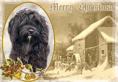 Tibetan Terrier Dog A6 Christmas Card Design XTIBTER-7 by paws2print