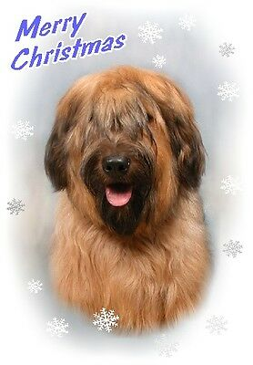 Briard Dog A6 Christmas Card Design XBRIARD-7 by paws2print