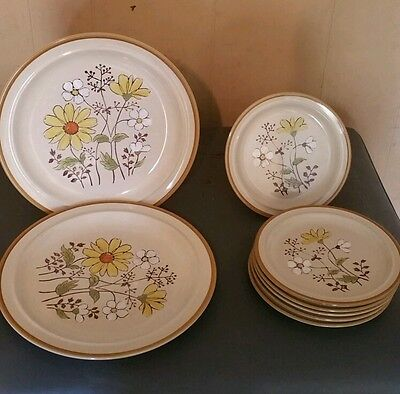 TWO 10 - 5/8 & SIX 7 INCH ANDRE PONCH 219 DAISY HAND PAINTED KOREAN PLATES