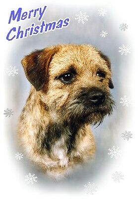 Border Terrier Dog A6 Christmas Card Design XBORDTER-10 by paws2print