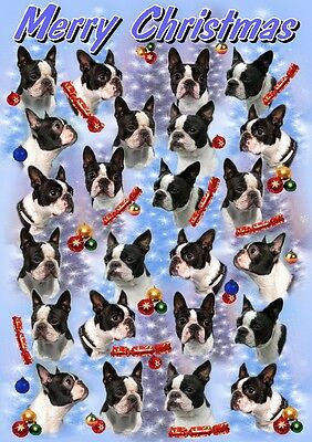 Boston Terrier Dog A6 Christmas Card Design XBOSTON-5 by paws2print