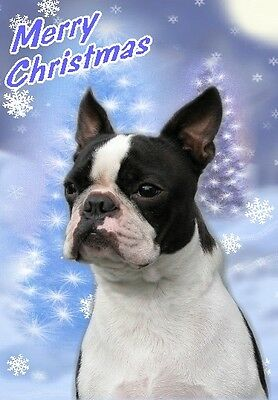 Boston Terrier Dog A6 Christmas Card Design XBOSTON-1 by paws2print