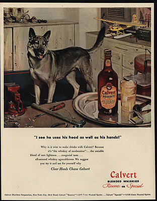 1947 Cute GERMAN SHEPHERD Dog - CALVERT Whiskey - TOM LOVELL Art - VINTAGE AD