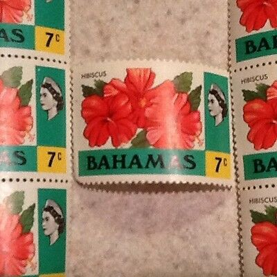 Bahamas 7c Hibiscus Stamps MNH.  7 Stamp Lot.  Two Strips Of 3 And 1 Single
