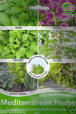Grow Your Own Herbs,6 In One Mixed Variety Pack Garden Seed Chives,basil,rocket