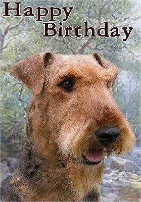 Airedale Terrier Dog Design A6 Textured Birthday Card BDAIREDALE by paws2print