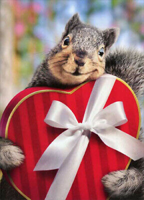Squirrel Holds Heart Box Stand Out Pop Up Funny Valentine's Day Card by Avanti