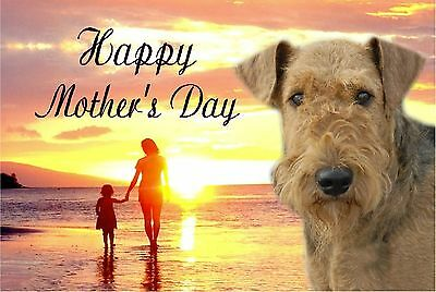 Airedale Terrier Dog C5 Ultra High Gloss Mothers Day Card MAIREDALE-1 paws2print