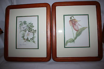 2 Walnut Framed And Matted Botanical Orchid Prints David Adams 1985
