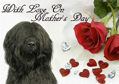 Briard Dog C5 Gloss Mothers Day Card MBRIARD-1 paws2print