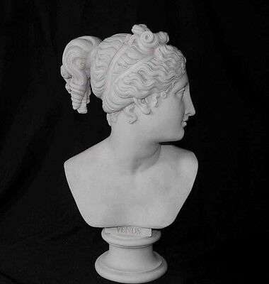 Italian Stone Bust Venus Greek Myth Sculputure Carving