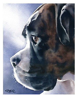 """""""BRINDLE BOXER"""" Watercolor Dog ART Print Signed by Artist DJR"""