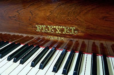 Pleyel Grand Piano (Rosewood) In Outstanding Condition