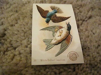 Victorian Trade card  Arm and Hammer Baking Soda  White Bellied Swallow