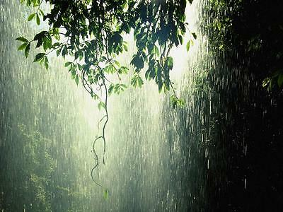 Rain Relaxation CD-Gentle Rain sounds for deep relaxation-Narellan Hypnotherapy