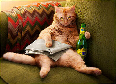 Cat With Beverage Funny Father's Day Card - Greeting Card by Avanti Press