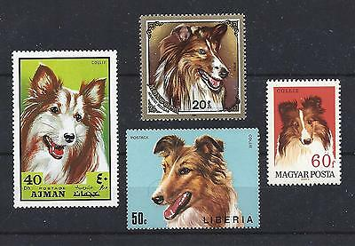 Dog Art Head Study Portrait Postage Stamp Collection ROUGH COATED COLLIE 4 x MNH