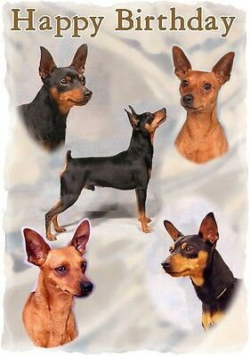 Mini Pincher Dog Design A6 Textured Birthday Card BDMINPIN-2 paws2print