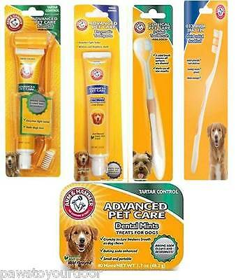 Arm & Hammer Dog Advanced Dental Care Toothbrush, Toothpaste, Mints, Brush