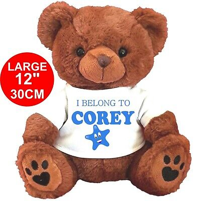 "Personalised Brown Teddy Bear 30CM/12"" I Belong To Any Name Birthday"