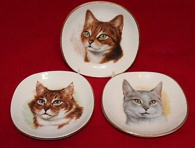 3 Vintage Weatherby Hanley England Royal Falcon Ware Cat Saucers