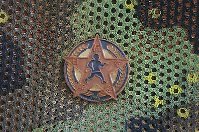 China People's Republic Army Military Badge PLA Chinese #230