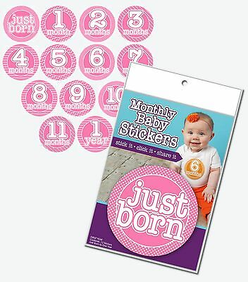 GIRL - PINK Monthly T-Shirt Stickers Baby Shower Gift - Photo Prop Miletsone