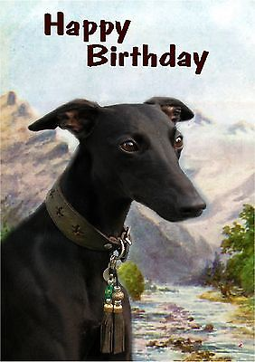 Whippet Dog Design A6 Textured Birthday Card BDWHIPPET-9 paws2print