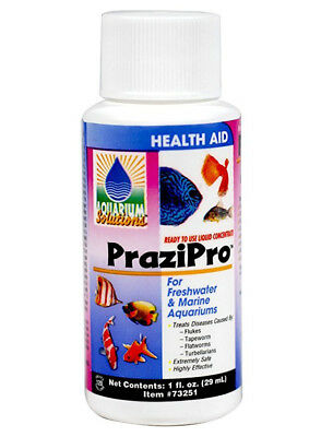 HIKARI Aquarium PraziPro Safe & Ready-To-Use Liquid Concentrate 1 fl. oz. 29 ml