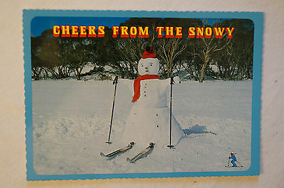 Cheers from The Snowy - Australia - Collectable - Postcard.
