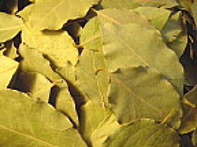 Bay Leaves - Food Grade - Sachets and Potpourri  1-2-4 oz