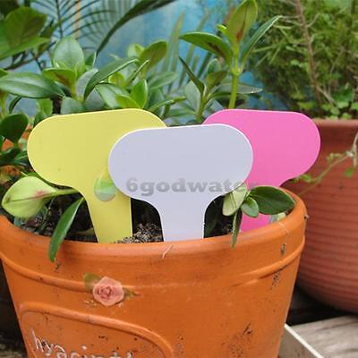 50pcs Plant Pot Markers Plastic Garden Stake Tags Nursery Labels T-type Gray