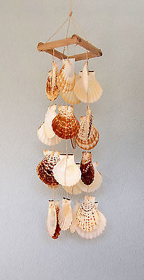 Tiger Scallops 55 cm long Wind Chime / Mobile (23130)