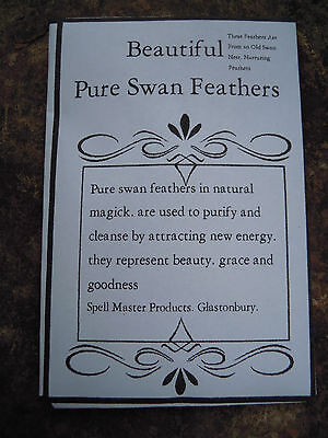 PURE SWAN FEATHERS Spell Supplies Spells Purify protection charm Magick spell