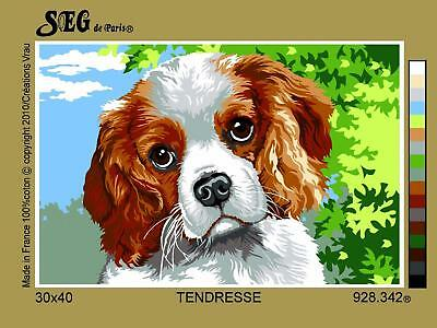 SEG de Paris Tapestry/Needlepoint Canvas – Spaniel (Tendresse)