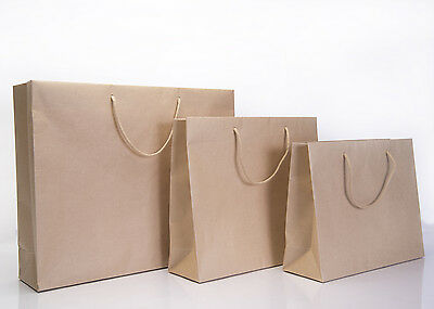 Brown Rope Handle Paper Party and Gift Carrier Bag / Luxury Bags With Handles