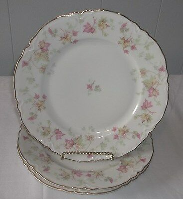 Hutschenreuther - Maple Leaf Pasco Dinner Plates (set of 2) - Bavarian China