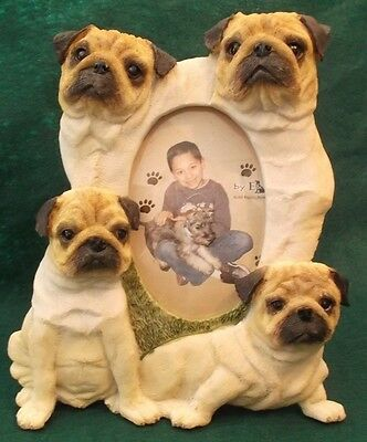 Pug Dog Picture Photo Frame by E&S Imports, Inc. New