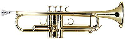 Lechgold Trumpet Bb Tuning Stainless Steel Valves Cleaning Cloth Mouthpiece Case